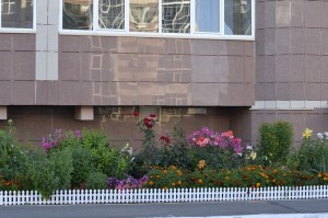 Цветники у дома №8